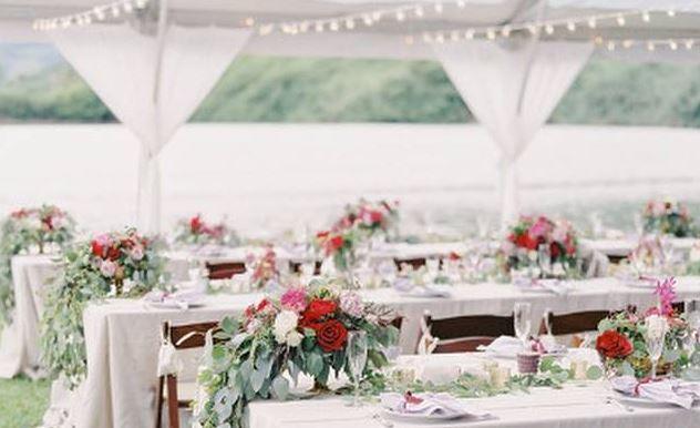 wesele na dworze1